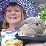 Frankie the rabbit